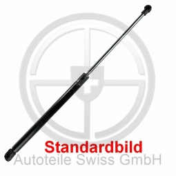 GASFEDER HECKKLAPPE, , Renault, Scenic / Grand Scenic 03-06
